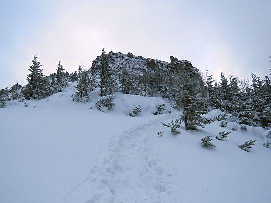Szczyt Sarniej Skały widziany po wyjściu z lasu.