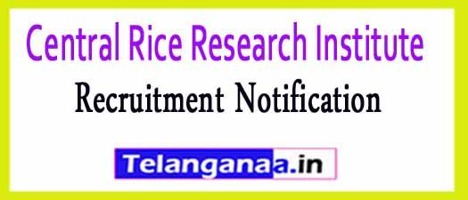 Central Rice Research Institute CRRI Cuttack Recruitment Notification 2017