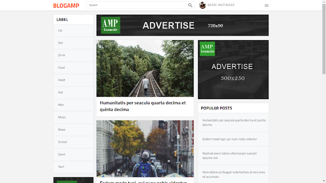 15+ Adsnese Friendly AMP Blogger Template ( Boost Your Website Speed)
