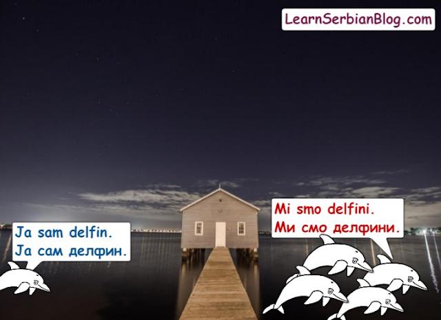 Plural Nouns in Serbian - Delfin