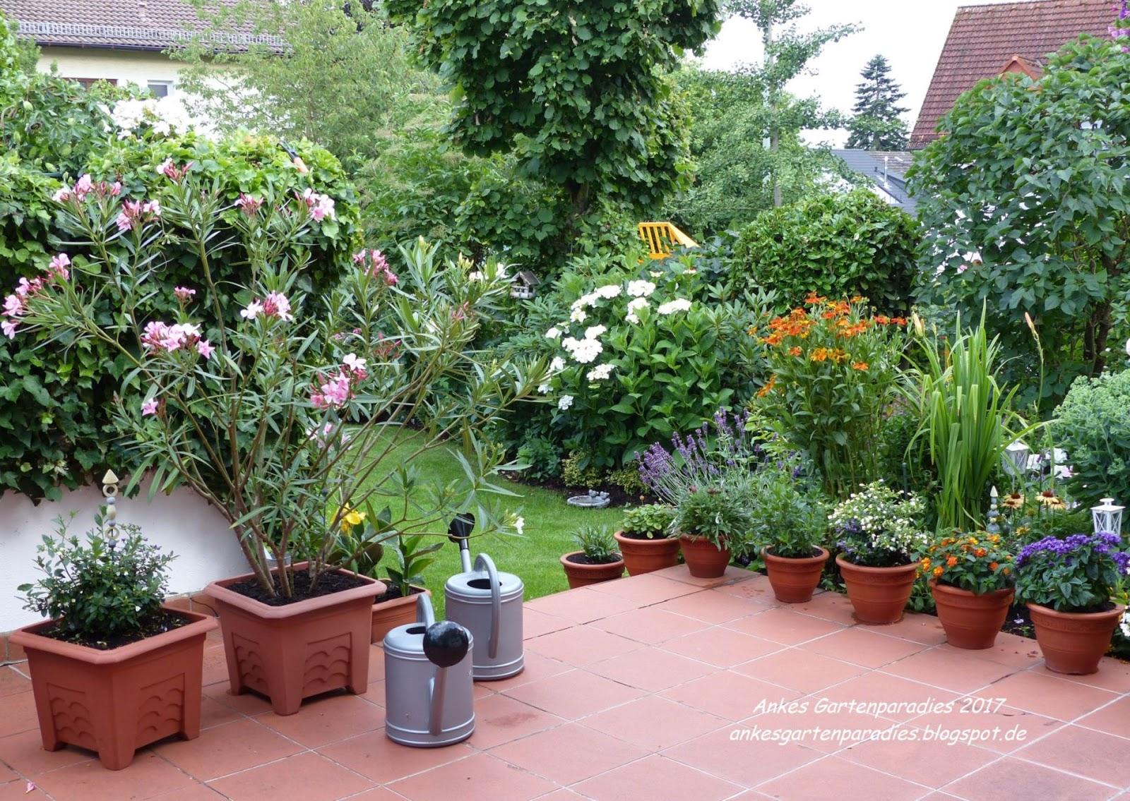 G A R T E N P A R A D I E S Bluhende Terrasse Kubelpflanzen