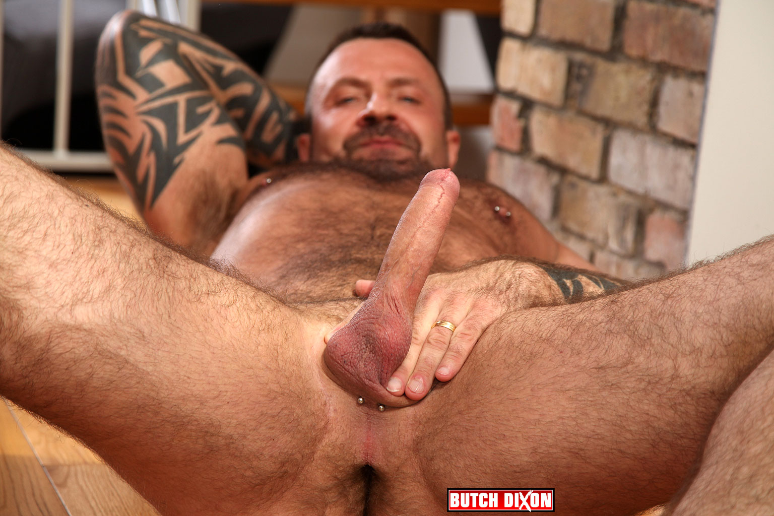 Gay Porn Spanish Bear