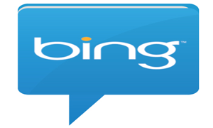 Bing Local Listings