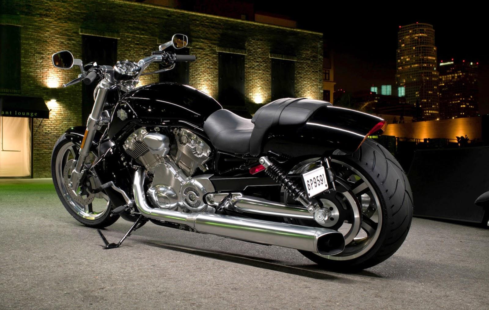 Harley davidson Touring 2009 service Manual on