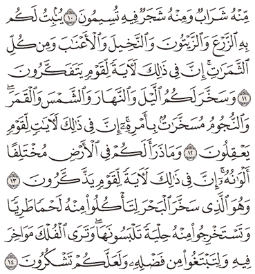 Tafsir Surat An-Nahl Ayat 11, 12, 13, 14, 15