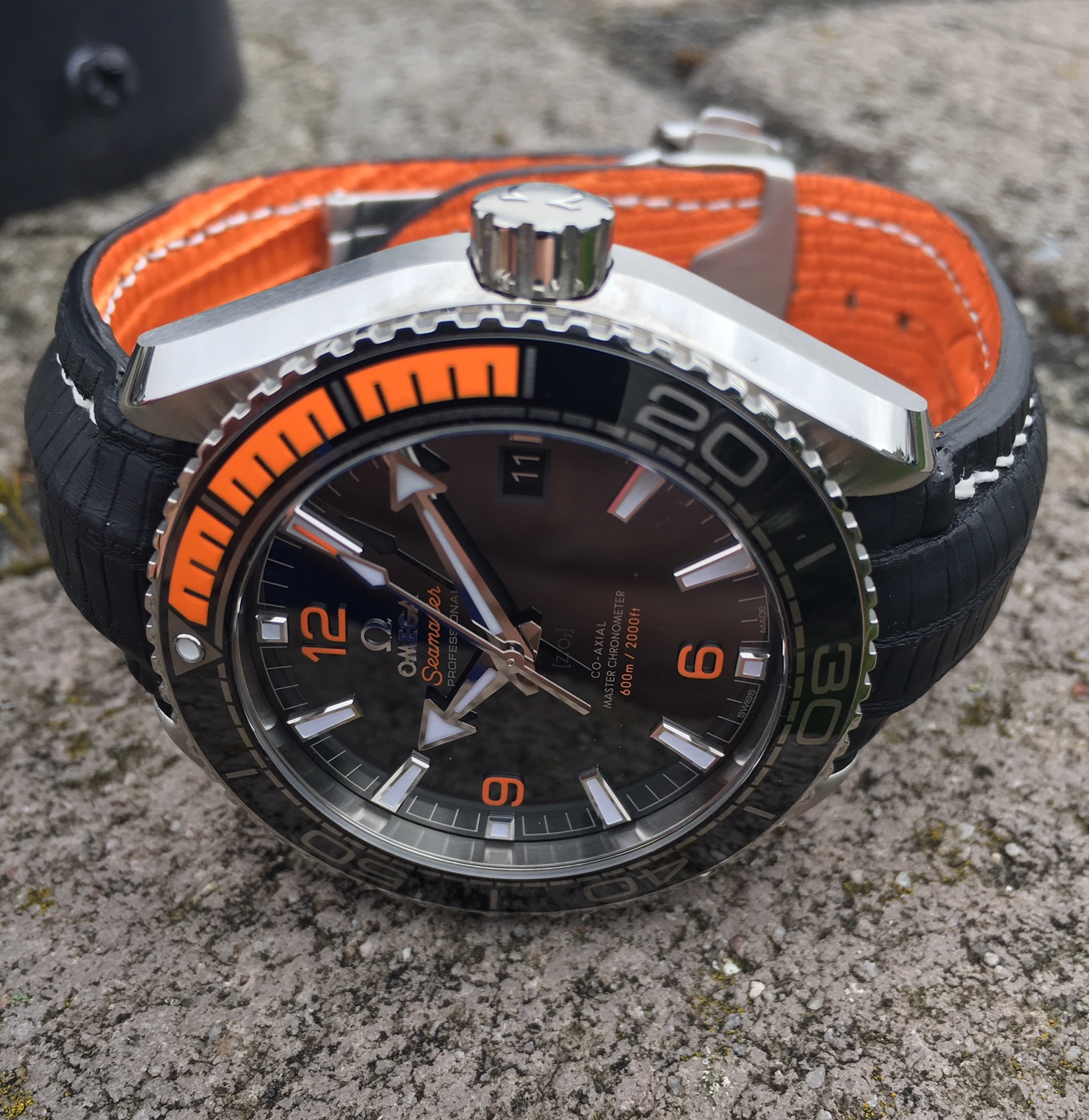 Gary's Omega Planet Ocean on SuperMatte Teju Lizard strap