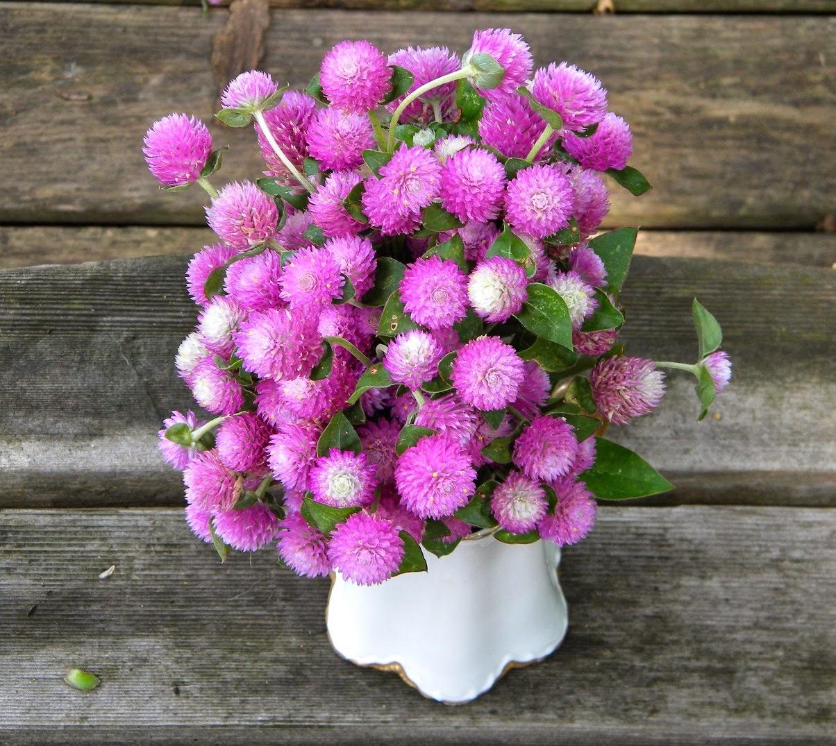 Wedding Flowers In February: Wedding Flowers From Springwell: February 2015