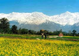 Beautiful kangra valley