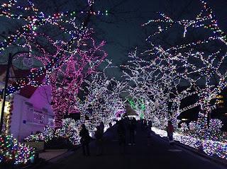 Yomiuri Land illumination