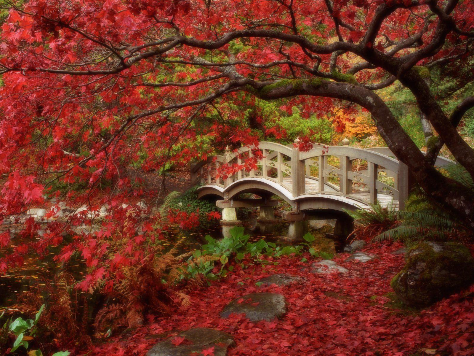 Gardens HD Wallpapers