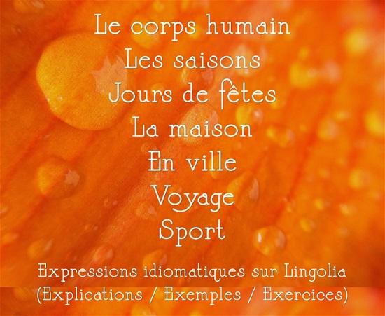 https://francais.lingolia.com/fr/vocabulaire/expressions
