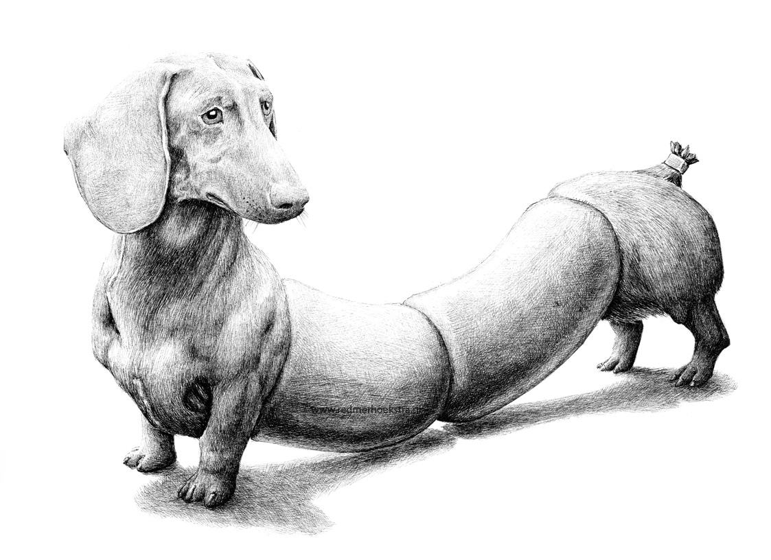 16-Dachshund-Redmer-Hoekstra-Drawing-Fantastic-and-Surreal-World-of-Hoekstra-www-designstack-co