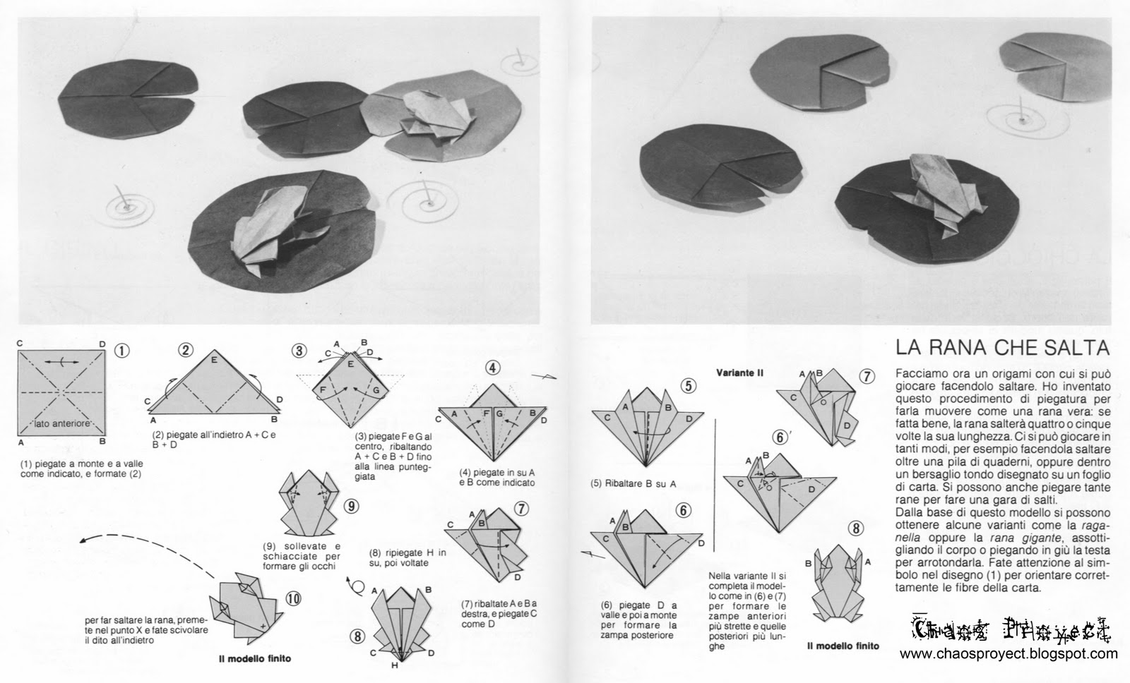 Origami Jumping Frog Diagram 2001 Suburban Radio Wiring Chaos Proyect Rana Y Nenúfar De