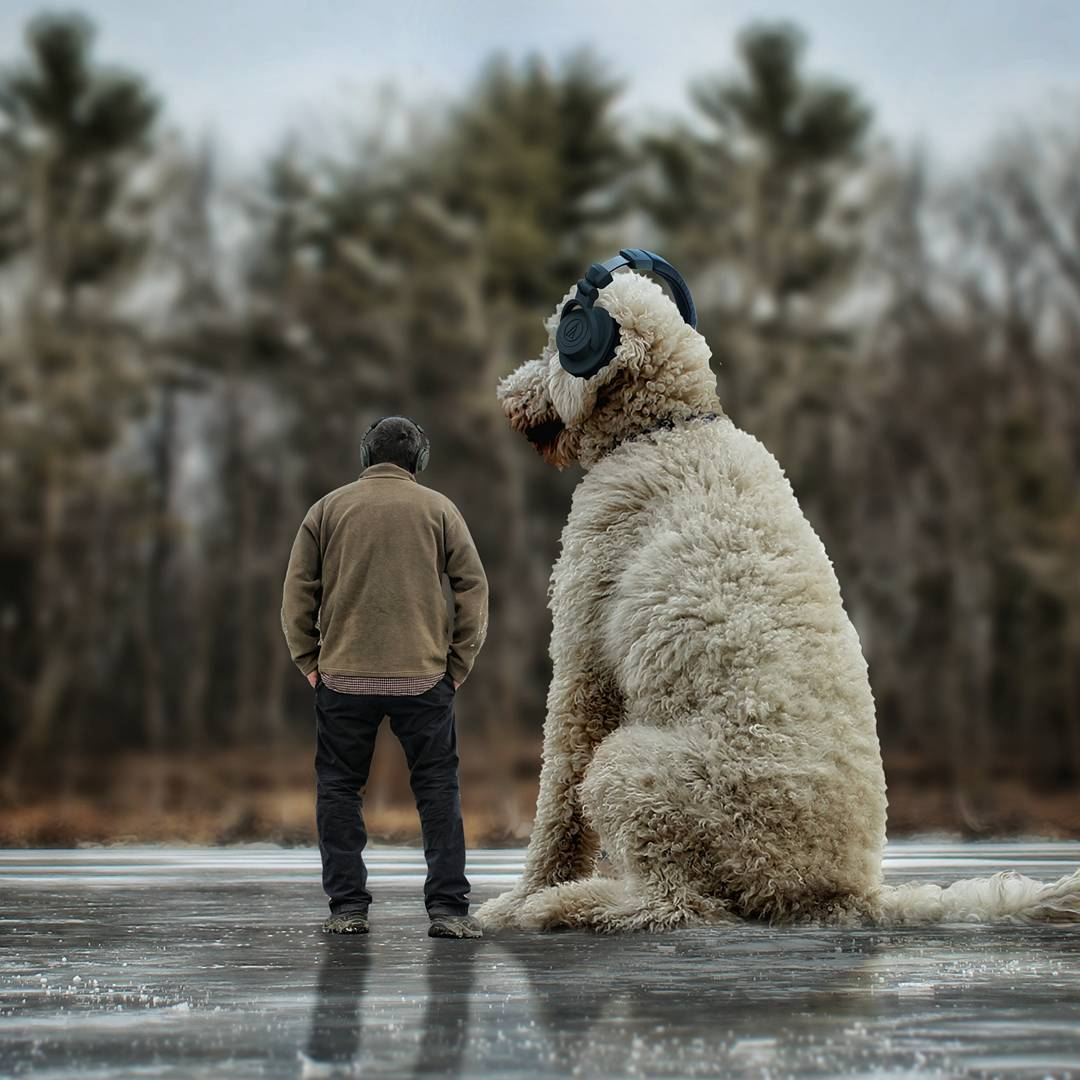 11-Sometimes-when-things-get-too-Hectic-Christopher-Cline-Juji-The-Giant-Dog-Photo-Manipulations-www-designstack-co