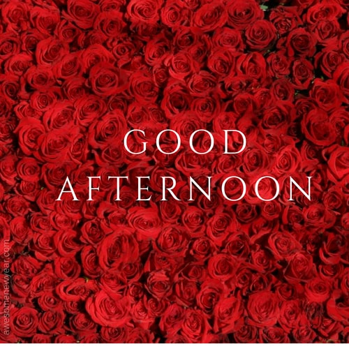 Good Afternoon wallpapers
