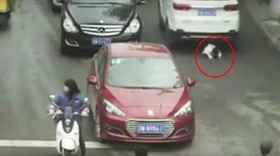 https://4.bp.blogspot.com/-2PokZueDx7k/WQV9h2pmeaI/AAAAAAAAEwo/3Hj-wydUxnoSrY8_QN8GmPeJRVIKwwjFQCLcB/s1600/china-child_road_accident_escape.jpg