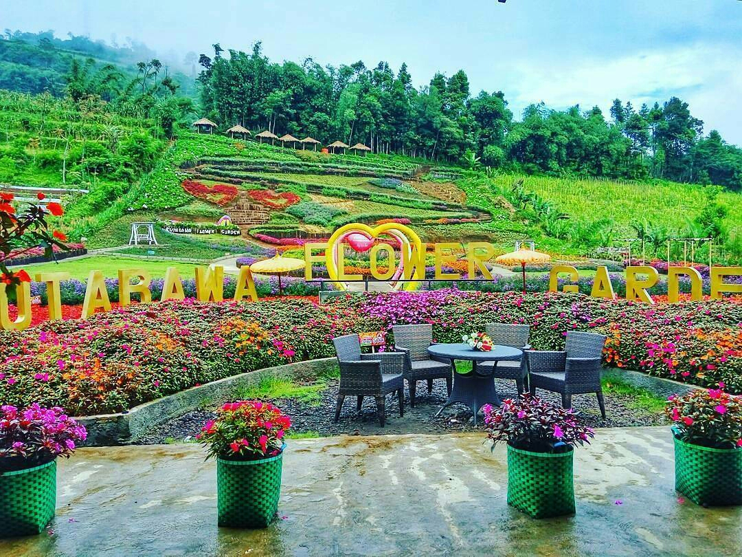 Image Wisata Flower Garden