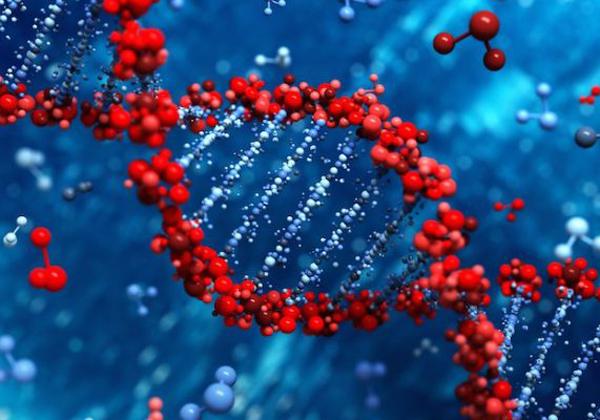 """Αποτέλεσμα εικόνας για DNA, Γονίδια, Ασθένειες και Eμείς"""""""""""