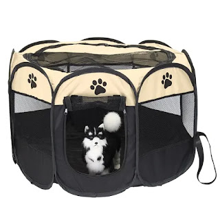 Pet Playpens Are a Must for Your Holiday Travel