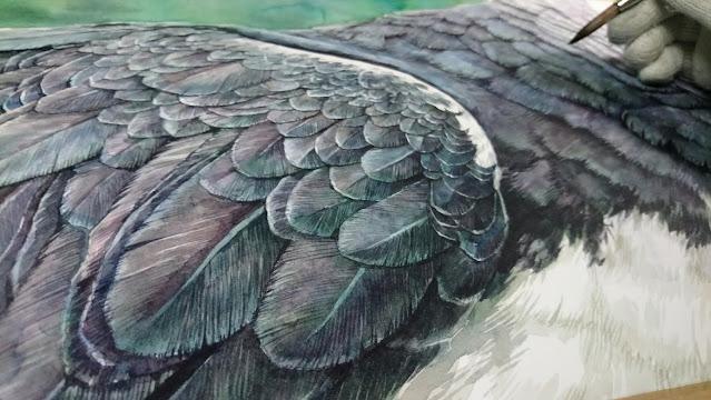 Illustration-artist-Leonardo-Rodriguez-acuarela