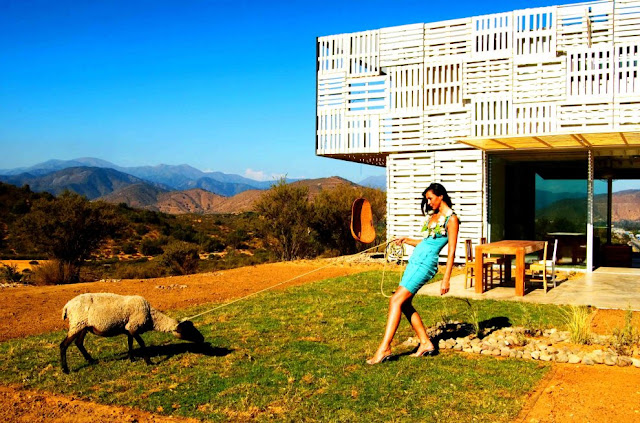 Shipping Container House with Dynamic Facade, Chile 2