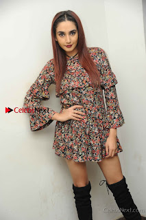 Kannada Actress Ragini Dwivedi Stills in Floral Short Dress at Ranachandi Movie Press Meet  0010.jpg