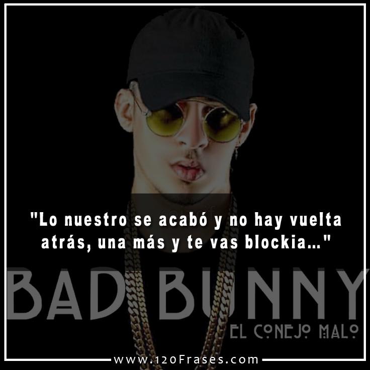 120 Frases De Bad Bunny 5 De 5 120 Frases