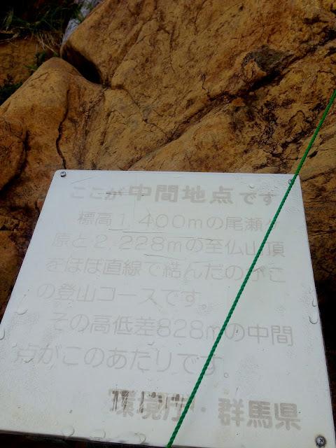 山ノ鼻と至仏山頂上との中間地点