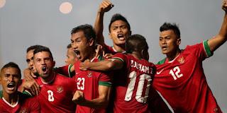 Fakta Perjuangan Timnas Indonesia di Piala AFF 2016