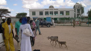 Hadapi Pemberontak Syiah Houthi, UEA Bangun Pangkalan Militer Di Somaliland