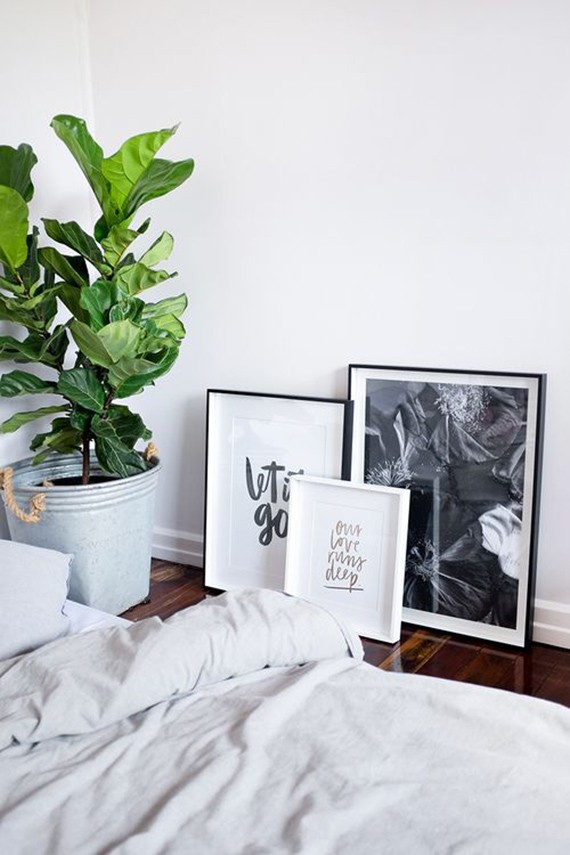 Living with greens | Image via Jasmine Dowling