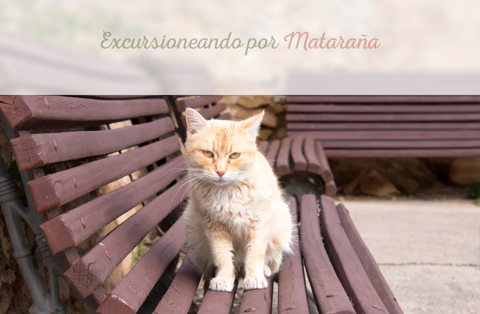 Excursioneando Matarraña Teruel Fresneda Gato