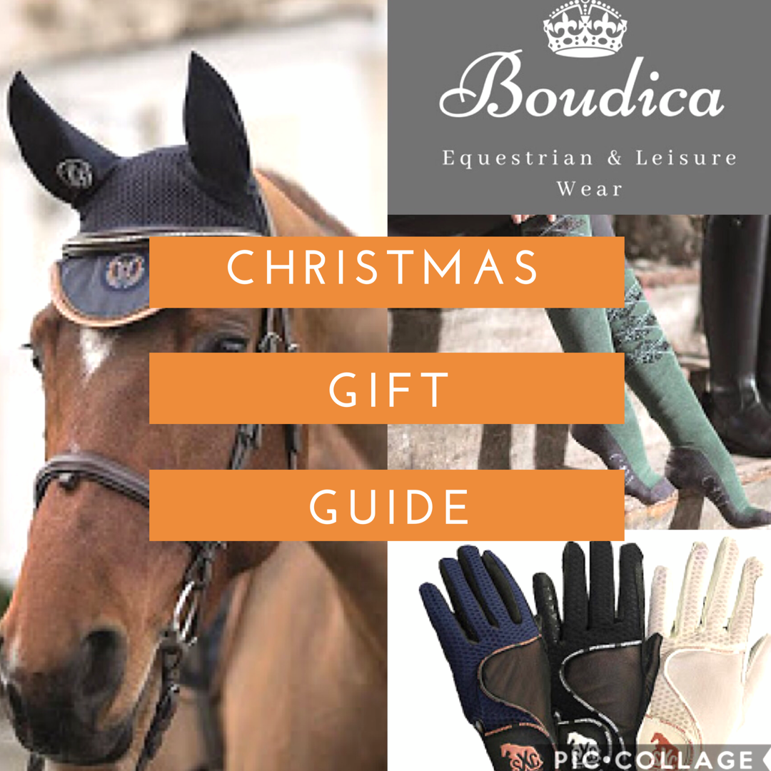 Team Tunnah Eventing: Equestrian Christmas Stocking Fillers Guide ...