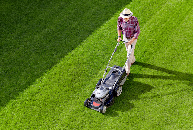 Lawn Mowing Service Provider