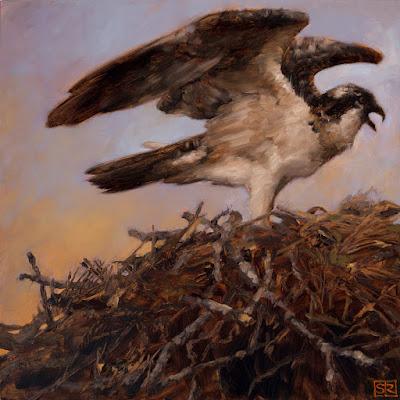 An oil panitng of an osprey on a nest of sticks by artist Shannon Reynolds