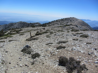 Looking west from Mt. Baldy to East Baldy