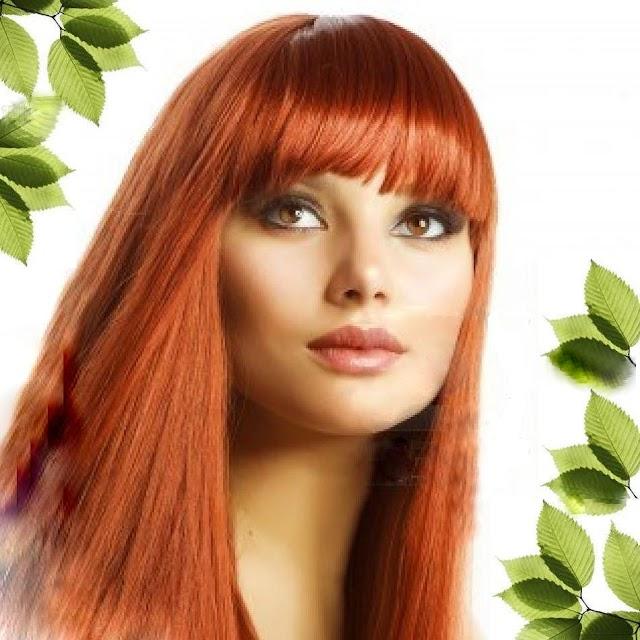 Saç Dökülmesini Azaltan ve Saç Çıkaran Bitkiler