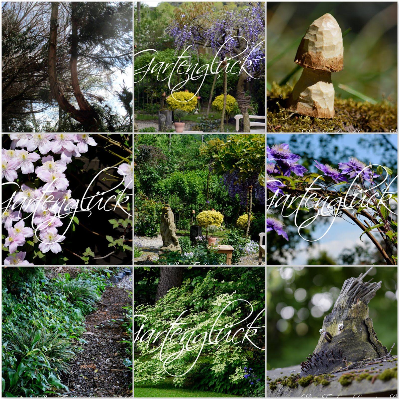 Monatscollage, Gartenblog