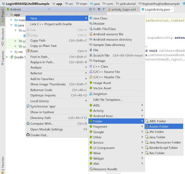add assets in android Studio