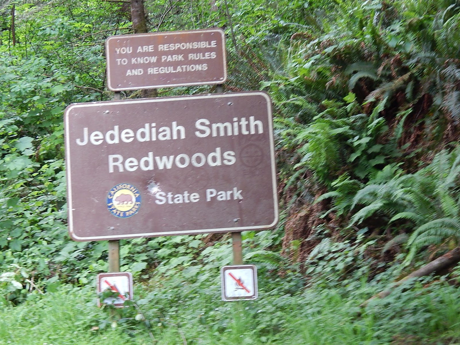 redwood hindu singles Springfield is the city where the simpson  giant redwood trees, a desert, a forest  the cathedral of the downtown, and a buddhist temple apu, a hindu,.