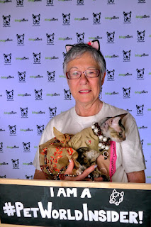 Coco, the Cornish Rex and Teri at BlogPaws, photo by Pet World Insider