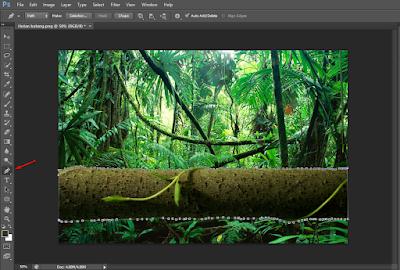 Cara Membuat Efek Blur Pada Foto (Autofocus) di Photoshop 21