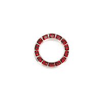 Swarovski Crystal Channel Set Circle (Garnet/RUBY Siam - JAN/JULY)