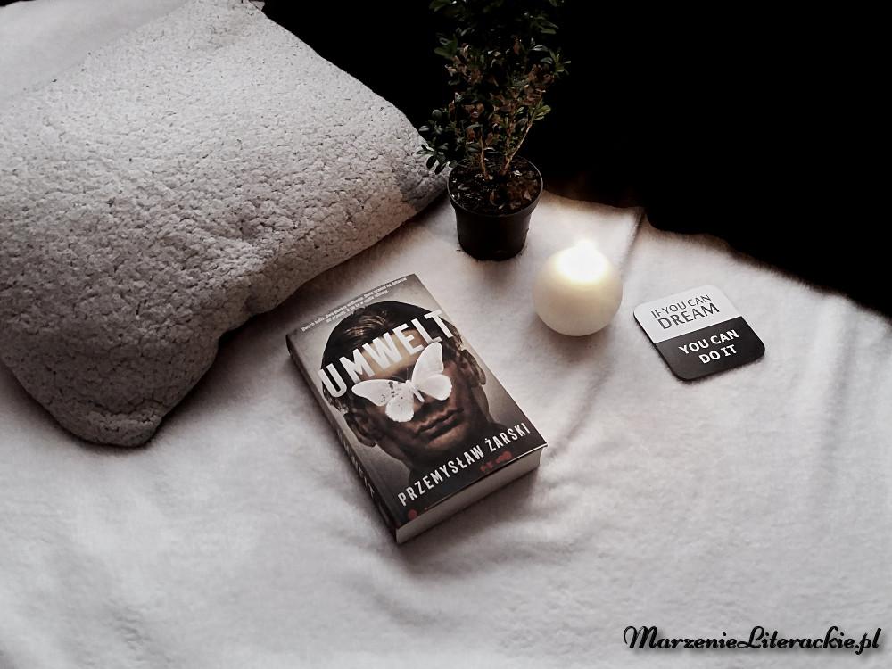 degustacja okładkowa, marzenie literackie, cykl książkowy