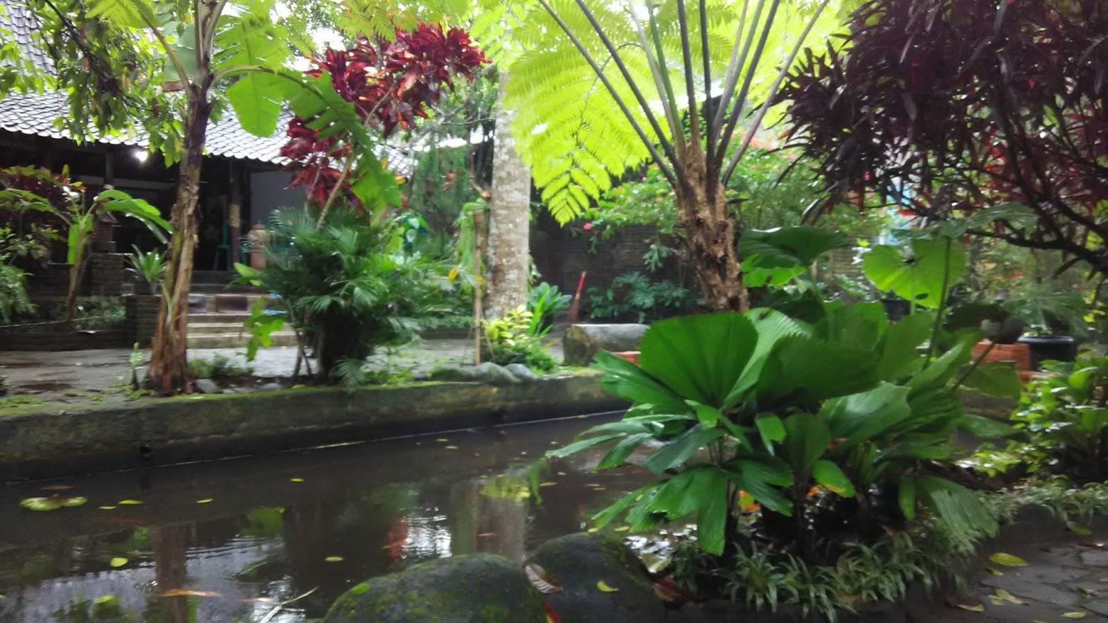 Homestay Sawahlunto Ke Desa Wisata Pentingsari Eps  1