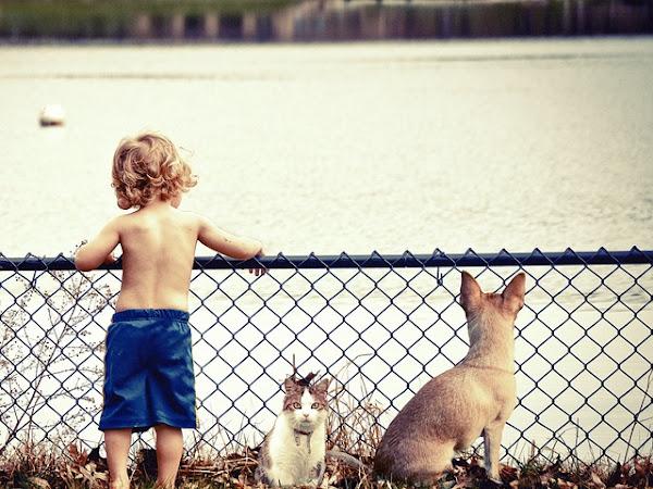 Umur Yang Tepat Mengenalkan Hewan Kepada Anak