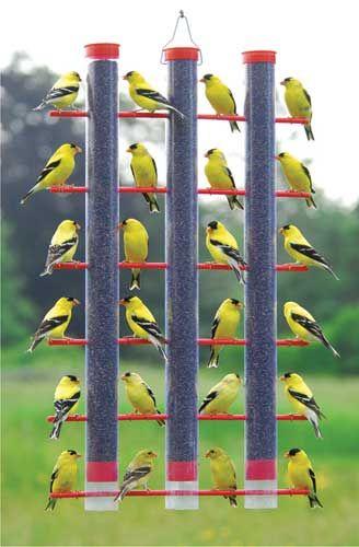 Позаботимся о наших пернатых друзьях кормушки, кормушки для птиц, для птиц, птичьи кормушки, для пернатых, осень, зима, домики для птиц, еда для птиц, кормушки из подручного материала, для зимы, семечки, орехи, зимовка птиц, птичья столовая, Позаботимся о наших пернатых друзьях, как сделать кормушку для птиц, из чего сделать кормушку для птиц, кормушки для птиц своими руками, оригинальные птичьи кормушки, идеи птичьих кормушек, поилки и кормушки для птиу, кормушки для птиц своими руками фото и оригинальные идеи, кормушка для птиц из старой посуды, кормушка для птиц своими руками фото из полипропиленовых труб, кормушка из пластиковой бутылки 1.5 литра для птиц, кормушки для птиц своими руками фото, кормушки для птиц своими руками из коробок, как смастерить кормушку для птиц, как сделать подвесную кормушку для птиц, как кормить птиц, домики для птиц идеи, домики для птиц фото, Позаботимся о наших пернатых друзьях кормушки, кормушки для птиц, для птиц, птичьи кормушки, для пернатых, осень, зима, домики для птиц, еда для птиц, кормушки из подручного материала, для зимы, семечки, орехи, зимовка птиц, птичья столовая, Позаботимся о наших пернатых друзьях