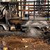 Συρία: Σιίτες άμαχοι στόχος επίθεσης – Νεκροί και τραυματίες (video)