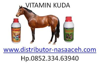 vitamin kuda pacuan