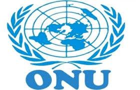 Offre d'emploi en Afrique : ONU recrute un Chargé de l'information en Afrique
